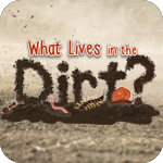 whatlivesdirt