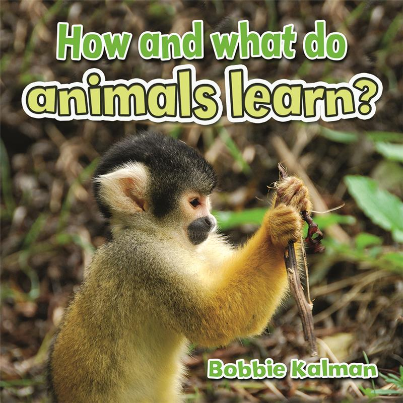 How and what do animals learn? - PB