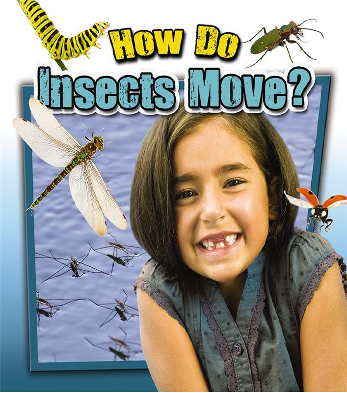 How Do Insects Move? - HC