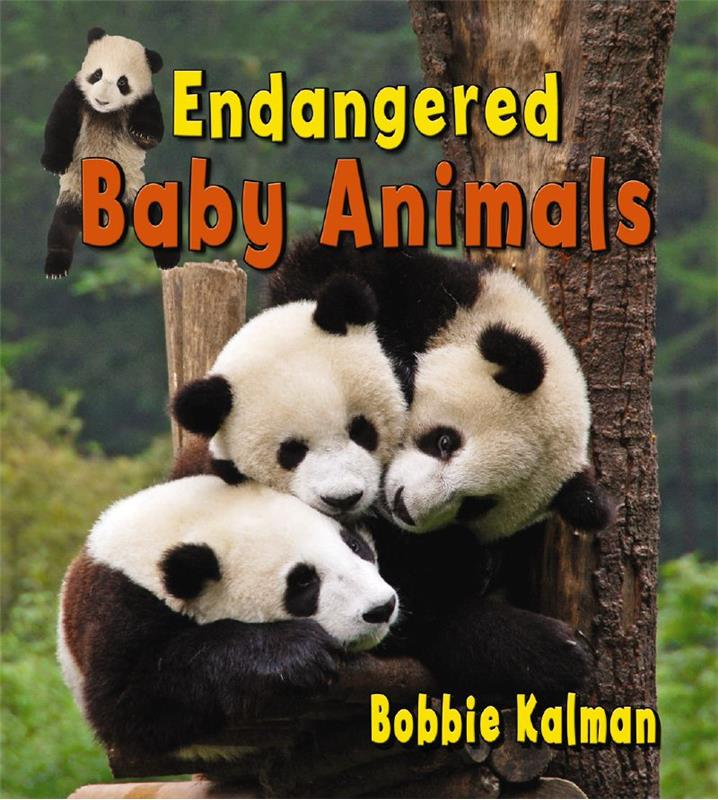 Endangered baby animals - HC