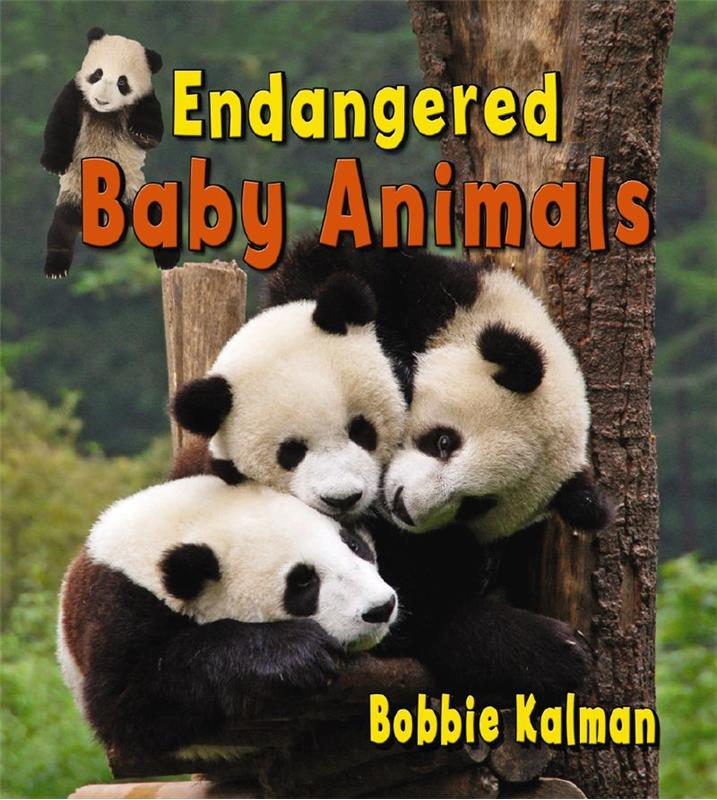 Endangered baby animals - PB