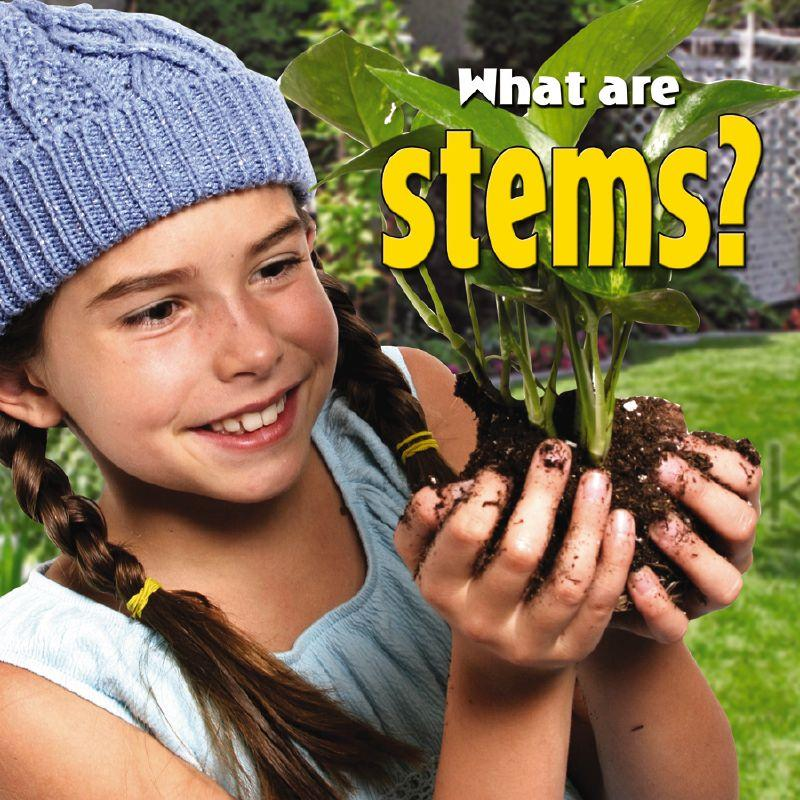 What are stems? - HC