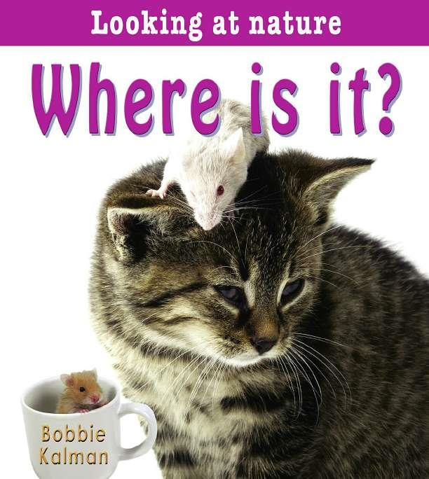 Where is it? - eBook