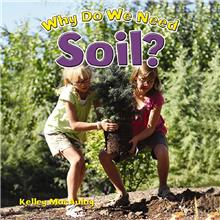 Why Do We Need Soil? - PB