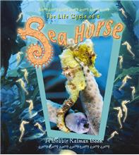 The Life Cycle of a Sea Horse - HC