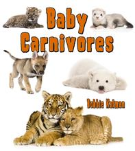 Baby Carnivores - HC