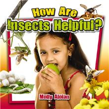 How Are Insects Helpful? - PB
