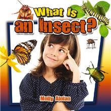 What Is an Insect? - PB