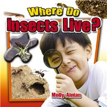 Where Do Insects Live? - PB