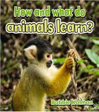 How and what do animals learn? - HC