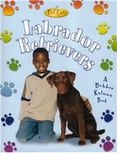 Labrador Retrievers - PB