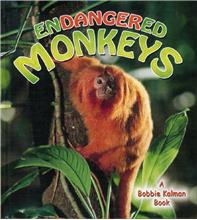 Endangered Monkeys - HC