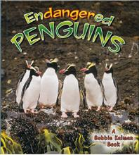 Endangered Penguins - HC