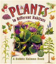 Plants in Different Habitats - PB