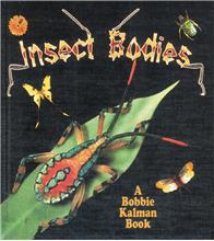 Insect Bodies - HC