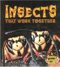 Insects that work together - HC