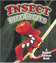 Insect Life Cycles - HC
