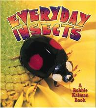 Everyday Insects - PB