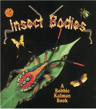 Insect Bodies - PB