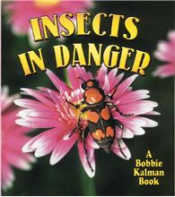 Insects in Danger - PB