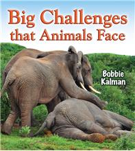 Big Challenges that Animals Face - HC