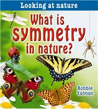 What is symmetry in nature? - HC