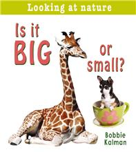 Is it big or small? - PB