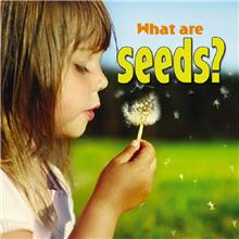What are seeds? - HC