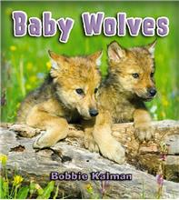 Baby Wolves - HC
