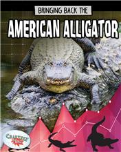 Bringing Back the American Alligator - HC