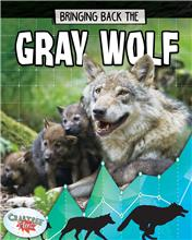 Bringing Back the Gray Wolf - HC
