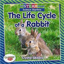 The Life Cycle of a Rabbit - HC