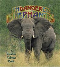 Endangered Elephants - eBook
