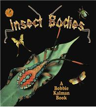 Insect Bodies - eBook