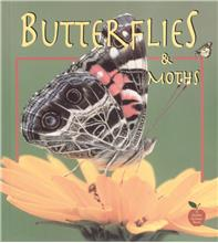 Butterflies and Moths - PB