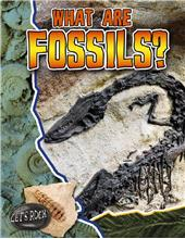 What Are Fossils? - HC