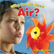 Why Do We Need Air? - eBook