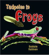 Tadpoles to Frogs - eBook