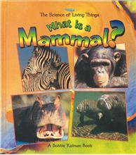 What is a Mammal? - PB