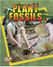 Plant Fossils - eBook