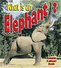 What is an Elephant? - eBook