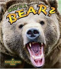 What is a Bear?-ebook