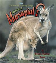 What is a Marsupial? - eBook