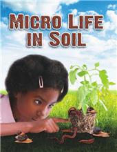 Micro Life in Soil - eBook