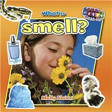 What is smell?-ebook