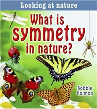 What is symmetry in nature? - eBook