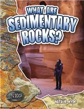 What Are Sedimentary Rocks?-ebook