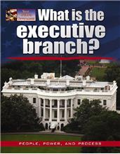 What is the executive branch? - PB