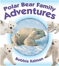 Polar Bear Family Adventures - HC