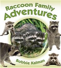 Raccoon Family Adventures - HC